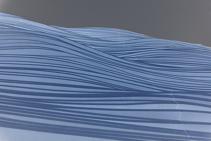 Blue Waves Sharon Telatnik